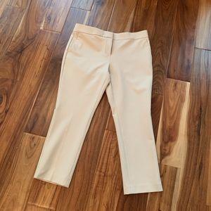 Ann Taylor Petite-Devin Fit pant Size 10P